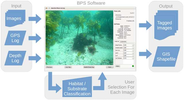 Benthic Photo Survey: Software for Geotagging, Depth-tagging, and